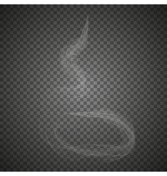 Delicate white cigarette smoke waves vector