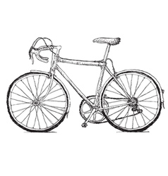 Vintage bicycle hand drawn vector