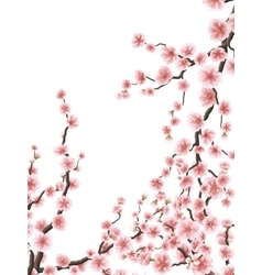 Delicate pink sakura cherry blossoms EPS 10 vector image