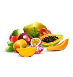 Fruity tropical bunch composition vector