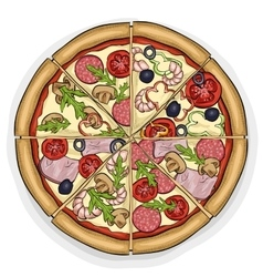 Pizza color picture vector