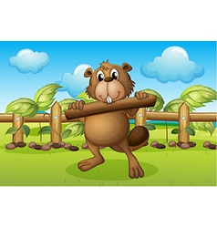 A beaver inside a fence holding a wood vector image vector image