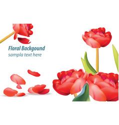 red tulip flower background spring season vector image vector image
