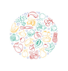 vegan logo template with doodle vegetables vector image
