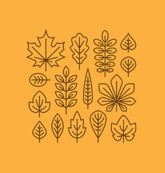 Autumn leaves line icons set vector