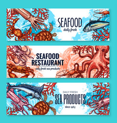 banners sketch seafood fish for restaurant vector image vector image