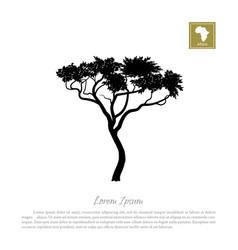 black silhouette of a tree and white background vector image