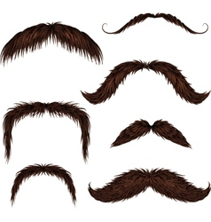 Brown different style isolated mustaches set vector image