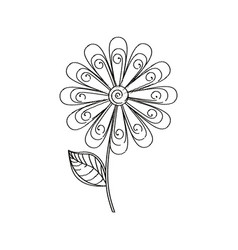 daisy flower decoration sketch vector image