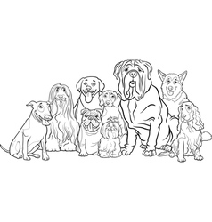 purebred dogs group cartoon for coloring vector image