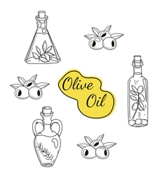 set of olive oil icons vector image