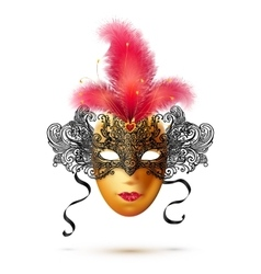 Golden and black ornate carnival mask with bright vector image