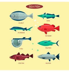 Fish set in flat style design Ocean sea vector image