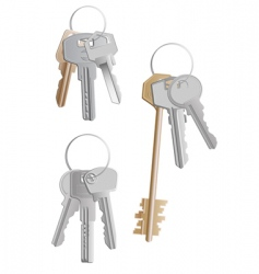 keys bunches vector image