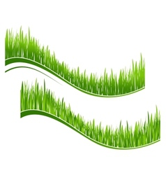 Two waves of green grass vector