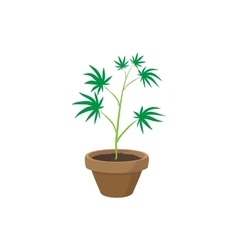 Cannabis plant in a pot icon cartoon style vector