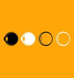 eyeball black and white set icon vector image