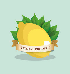 lemon natural product leaves vector image