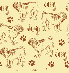 seamless pattern with pug vector image vector image