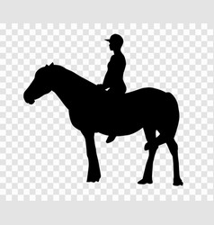 sticker to car silhouette rider on horse expert vector image