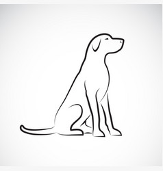 A labrador retriever dog on a white background vector