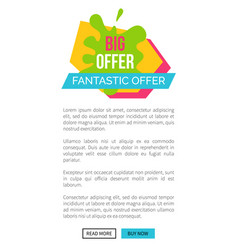 big offer fantastic webpage vector image