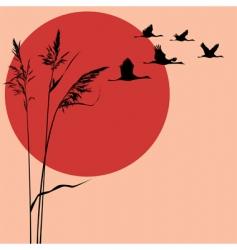 cranes vector image vector image