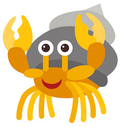 Hermit crab on white background vector