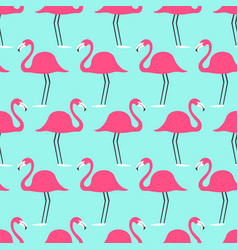 Tropical birds flamingo on a turquoise background vector