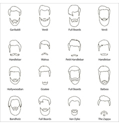 Mans hair set of beards and mustaches line vector