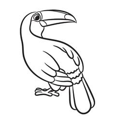 Toucan bird outlined vector