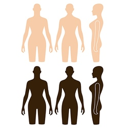 Woman mannequin outlined torso vector