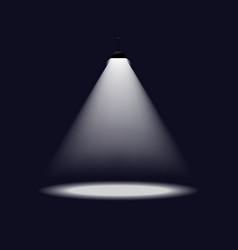 Lantern illuminates round scene image vector image