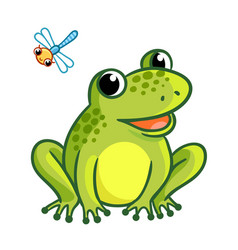frog is sitting on a white background vector image vector image