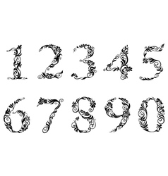 Digits and numbers set with floral details vector