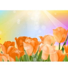 Bouquet of fresh spring tulips on bokeh eps 10 vector