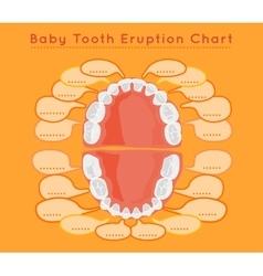 Teeth Infographic vector image