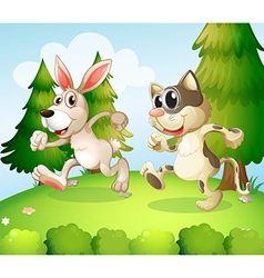A bunny and a cat running above the hill vector