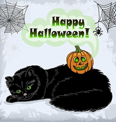Card of halloween cat and pumpkin with green eyes vector