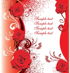Red Rose Design with Text Space vector image