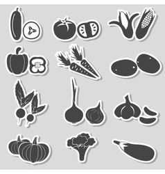 set of black various vegetables stickers eps10 vector image vector image