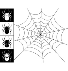 Spiders and web vector