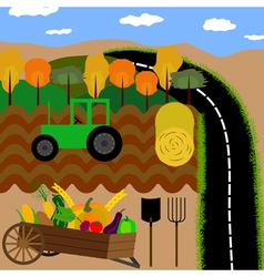 Autumn road vector