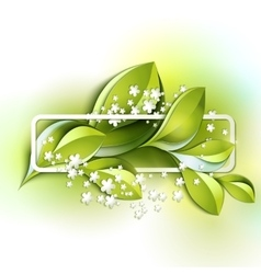 Colorful spring leaves vector image