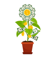 flower money investment isolated on white vector image