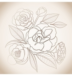 Graphic camellia set vector