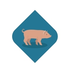 Isolated pork livestock animal design vector