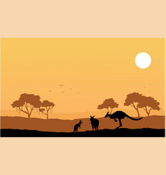 Collection kangaroo on the hill scenery vector