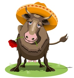 Cow in Sombrero vector image