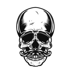 human skull with mustaches isolated on white vector image vector image